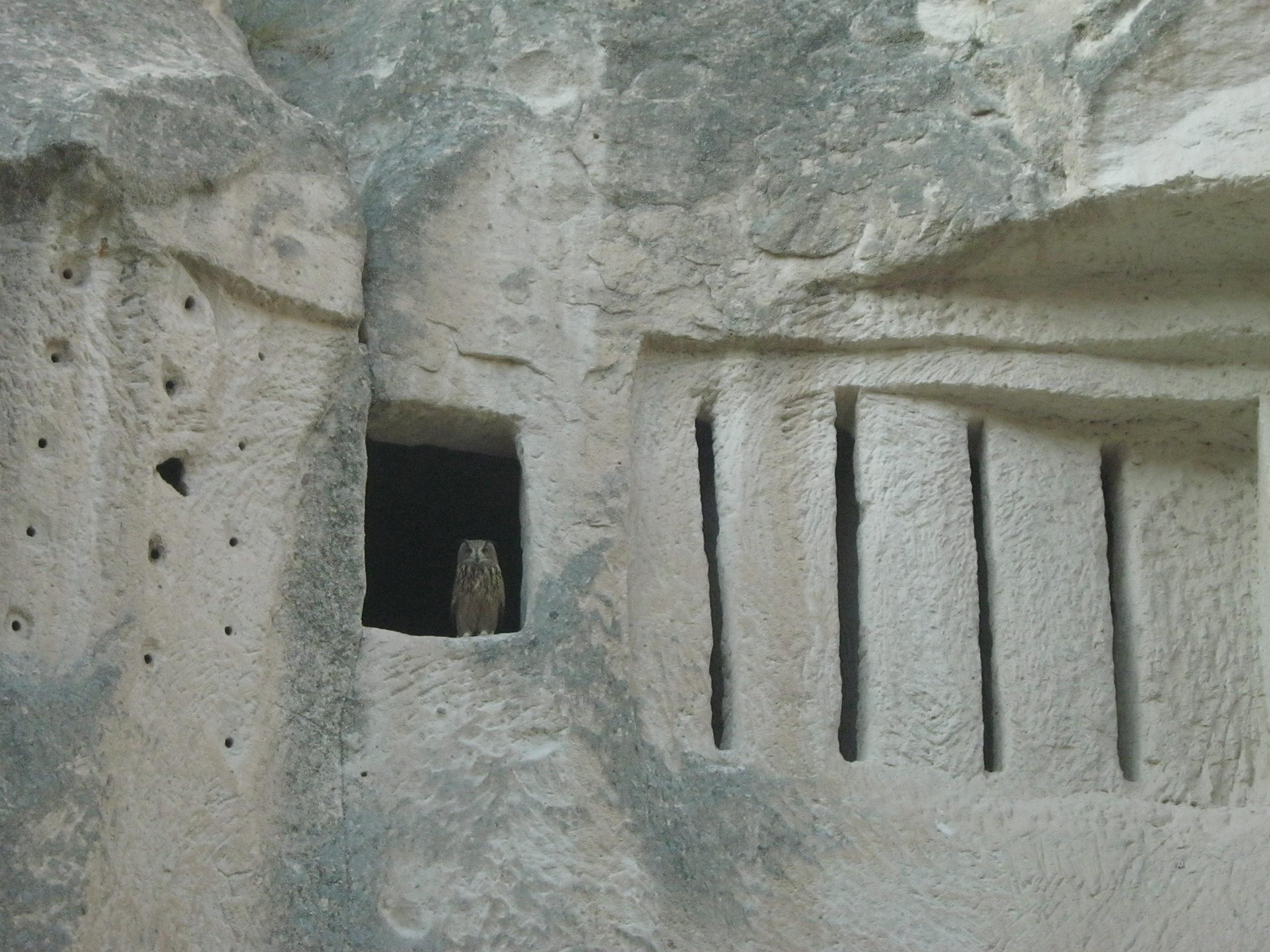 пещерный улей в Каппадокии