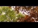 Трейлер фильма «Синий - самый теплый цвет»