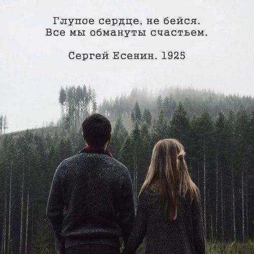 https://pp.vk.me/c7011/v7011842/3246b/E7uWbbRyZGQ.jpg