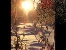 белая гвардия.слова и музыка ивана бобровского.запись в домашних условиях