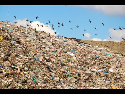 Выступление в Госдуме России против завоза московского мусора в другие регионы страны