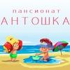 Пансионат Антошка | Железный Порт | Черное море