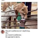 Илья Колесников фото #22