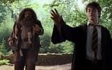 Harry Vader #coub, #коуб