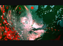 Май реплей | Imperial Circus Dead Decadence - Uta 6.11*