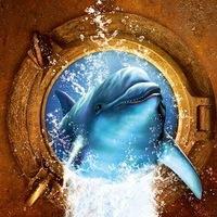 """Фестиваль """"Золотой Дельфин"""""""