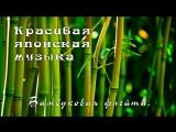 Красивая японская музыка - Бамбуковая флейта