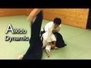 Dynamic Aikido - Iriminage & Jiyu waza