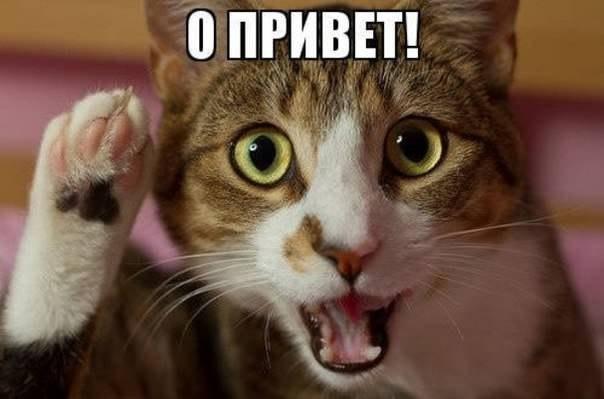 Всяко - разно 37 )))