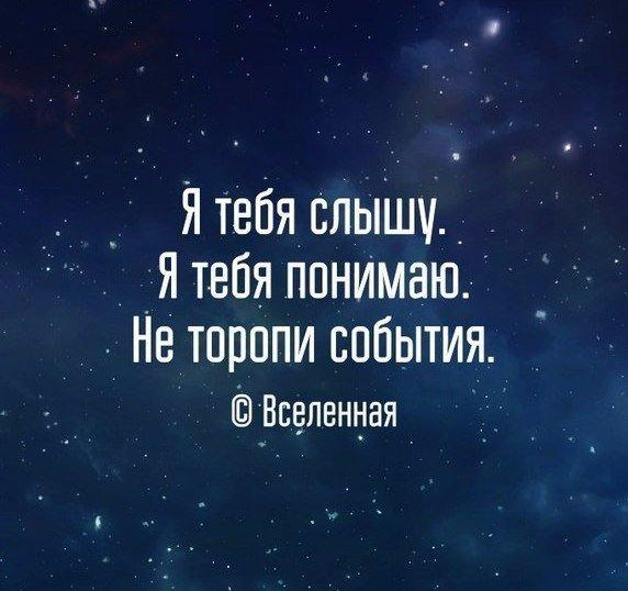 https://pp.vk.me/c543106/v543106769/25f0d/v37Oi81pnn8.jpg