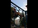 Паркур, преодоление препятствия сверху с помощью рук и ног