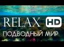 Релакс подводный мир океана HD 1080p спокойная живая музыка
