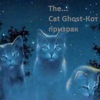Cat Ghost, 19 января , Луганск, id224294833
