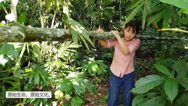РЕКОНСТРУКЦИЯ (06). ТЕХНОЛОГИИ И БЫТ КАМЕННОГО ВЕКА. Заготовка бамбука и строительство каркаса будущего дома.