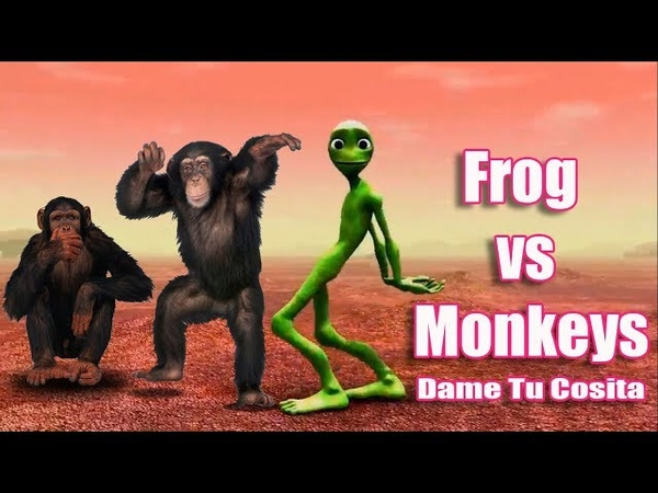 Dame Tu Costia Song | Frog vs Moneky | Compilation Dance Challenge Video