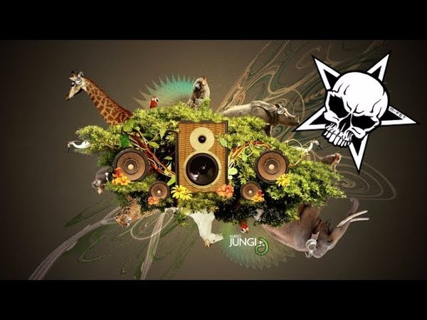 Drum and bass reggae mix ultimate jungle ragga download 2017 free mix