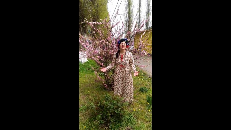 Генрих Ужегов, «Весною яблони дарят...» (читает Светлана Тищенко)
