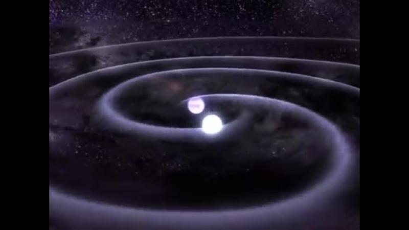 Animation of White Dwarf Gravitational Wave Merger