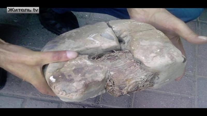 Древний трансформатор, которому 20 тысяч лет найден в Косово. Неудобные артефакты. 4 часть