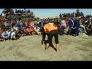 Gazanjyk toyy - Turkmen goreshi (4-nji bolegi) || turkmenvideolar