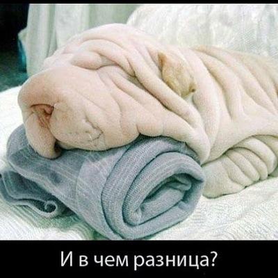Марфа Васильевна-Я, 10 декабря 1997, Челябинск, id213507298