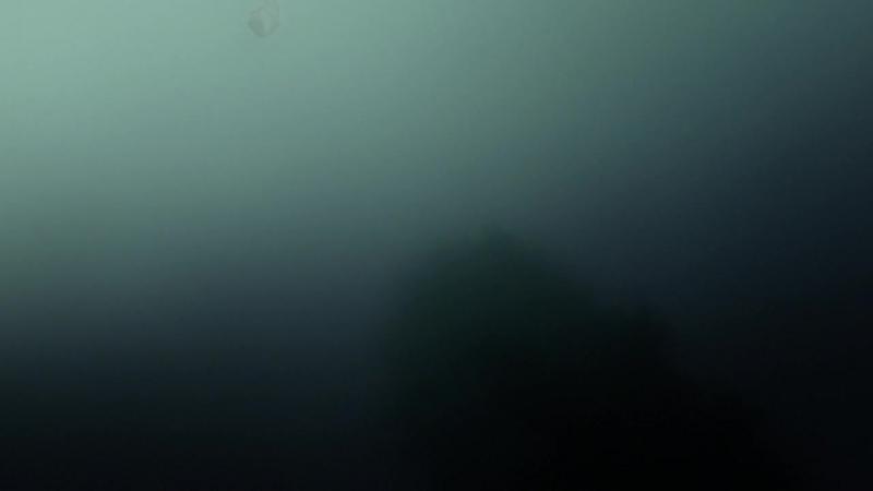 Мастер Муши 1 сезон 5 серия Странствующая топь