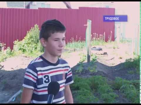 Супруги Стекольщиковы из посекла Трудовое воспитывают 19 детей