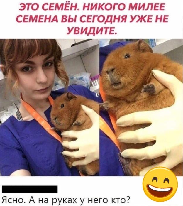 А на руках у Семёна большая, наглая, жирная крыса....😂