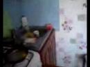 Видео-0016