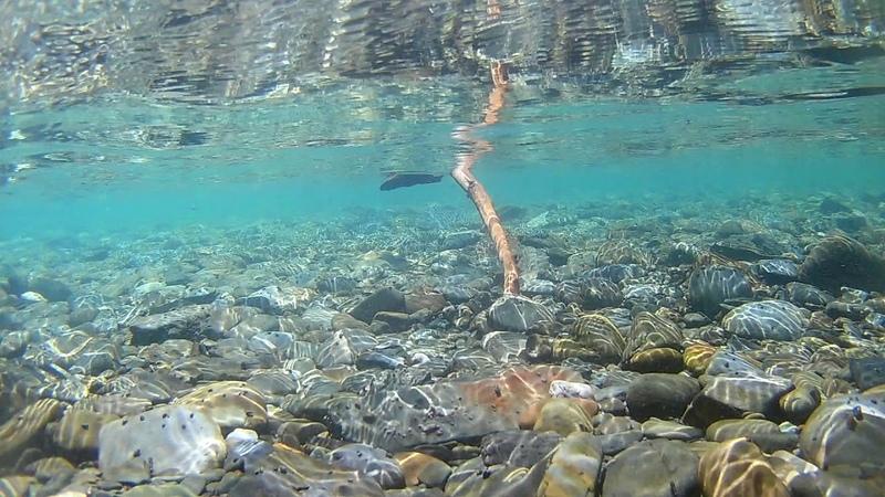 горная река Озерная