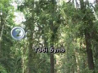 ТЕЧЕ ВОДА КАЛАМУТНА — караоке Українська народна пісня Ukrainian folk song karaoke