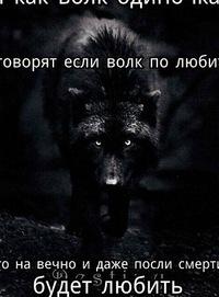 Вячеслав Баранов, 6 сентября 1985, Владимир, id166228102