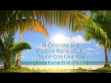 D Zelensky and Vladimir Konanchuk - Some One Like You (Andy Lime 2nd Remix)