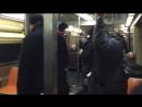 Крыса в вагоне метро навела шмон