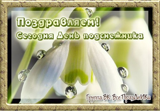 https://pp.userapi.com/c845417/v845417799/31bb5/YxDCm4_QGwQ.jpg