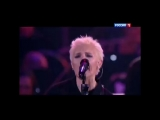 Диана Арбенина&ampНочные Снайперы, оркестр