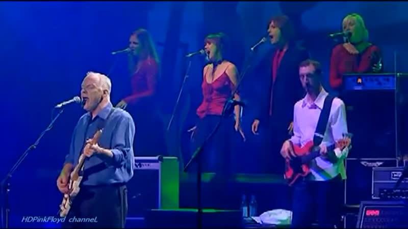 "Pink Floyd"" David Gilmour"