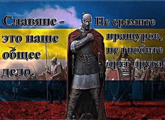 Вице-президент США осуществит визит в Киев - Цензор.НЕТ 439