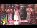 Amigos (Agave) - Bailando