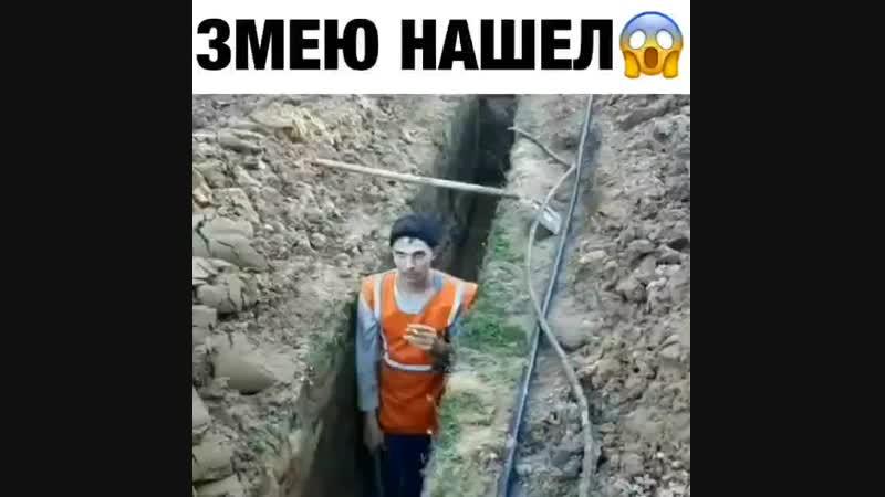 газ едавитый 😂😂😂