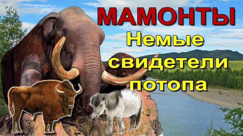 Елена Гусакова: Мамонты. Немые свидетели потопа.