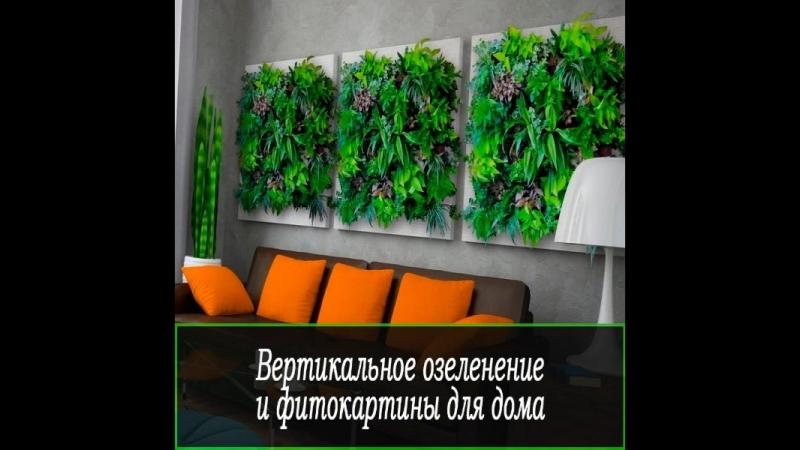 Фитостена вертикальное озеленение интерьеров