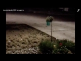КРУПНЫЙ ГРАД РАЗБИЛ МАШИНЫ В ГОРОДЕ ФОНТЕЙН, США LARGE HAIL IN FOUNTAIN 12.06.2018