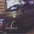 a_n_e_c_h_k_a_kis video