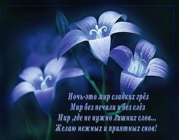 http://cs323718.userapi.com/v323718159/1230/mvbneTg2mVI.jpg