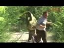 Jurassic Park (Пранк)