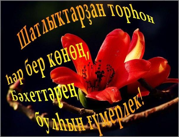 Открытки, открытки на башкирском языке с юбилеем