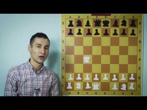 Название шахматных фигур - обучение по шахматам