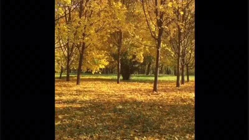 Осень — последняя, самая восхитительная улыбка года. Уильям Каллен Брайант