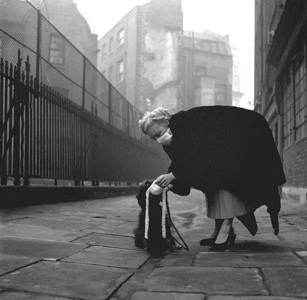 Лондонский смог 1953 года